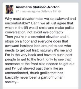 Elevator Rides