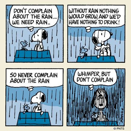 On summer rain and peanuts comics anaventures for Classic animal house quotes